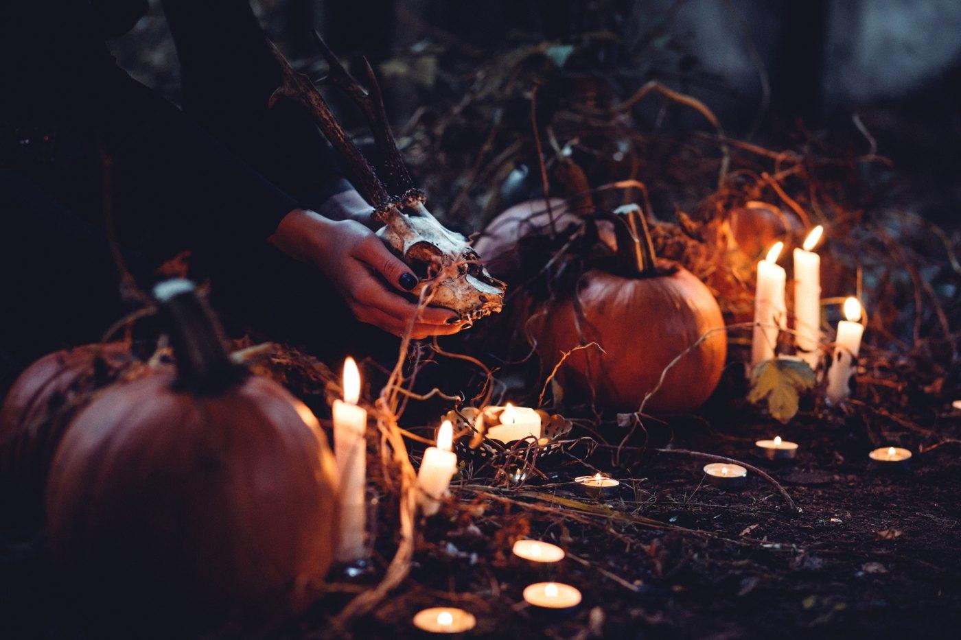 Hoe Ga Je Verkleed Met Halloween.Halloween Totalex